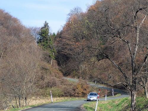 口内 5区の風景