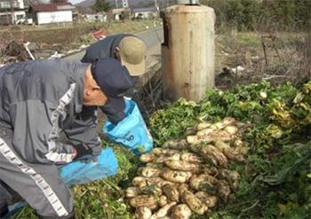 農作物の集荷