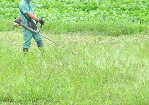 草刈りのイメージ
