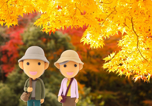 秋の5区散策と食事会参加者募集