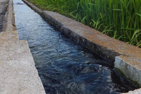 農業用水通水に伴う幹線用水路等の 事故防止についてお願い