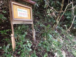 明神岳登山道整備